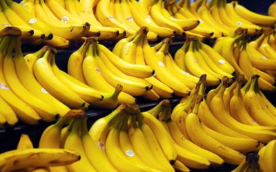 Bananas Have Been Shown to Increase Risk of Cancer