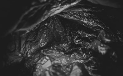 The Art of Collecting Plastic Grocery Bags